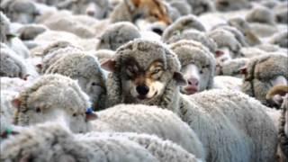 Fábulas de Esopo  - O Lobo e as Ovelhas
