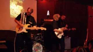 Insect Surfers - Plankton Dance (Live 2010)