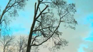 Tchaikovsky   Symphony No  1 in G minor, Op 13   Winter Dreams  1 width=