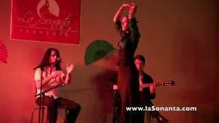 La Sonanta flamenco Zottegem