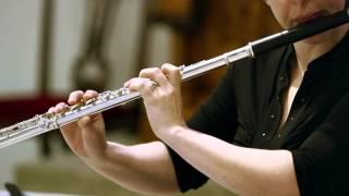 Canon in D by Johann Pachelbel (Flute Violin Cello Trio)