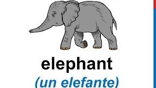Curso de inglés 75 - LOS ANIMALES en inglés para niños Vocabulario Animals in English Vocabulary