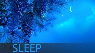 8 Hour Sleep Music For Insomnia: Deep Sleep Music, Sleeping Music, Help Insomnia ☯207
