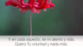 Lauren Daigle  - TRUST IN YOU -  Español