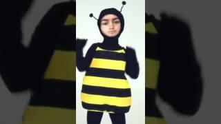 Alonzo binta