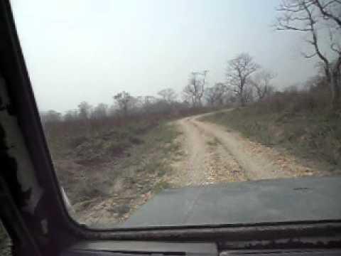 12 Jeep Safari 3.AVI