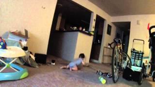 Sebasian crawling