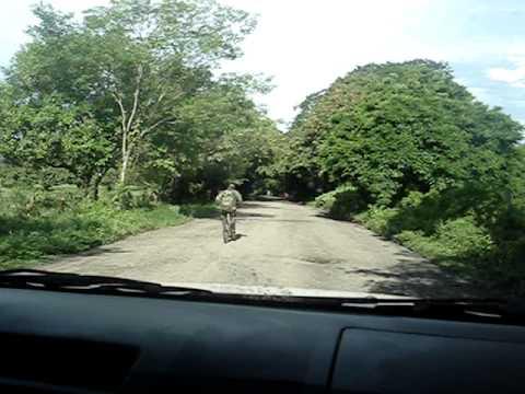 Role nas ruas da Nicaragua próximo a Popoyo