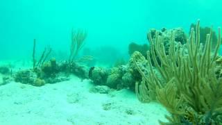 AKASO EK7000 1080p U S  Virgin Islands