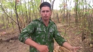 Aktiv   Ne mnogo pro armejskuju dvizhuhu