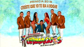 Creiste Que Yo Te Iba A Rogar - Internacional Yurimaguas (PRIMICIA 2018)