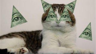 illuminati Confirmed Cat Edition