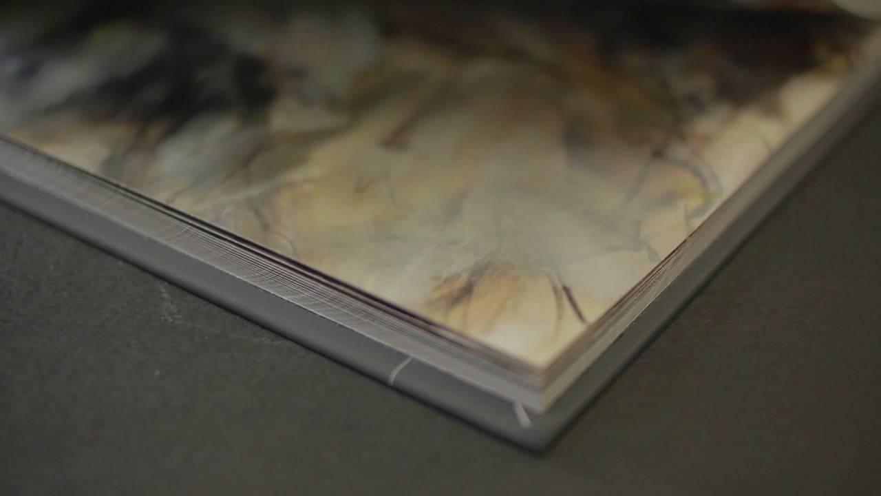 Anna Razumovskaya a Modern Master - Museum Edition book