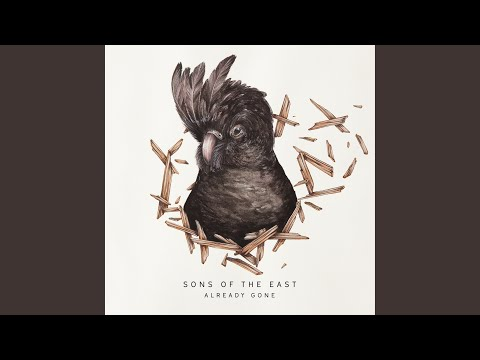 Fast And Slow de Sons Of The East Letra y Video