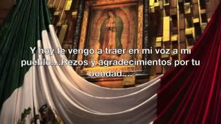 "Adrianna Foster ""Guadalupana"""