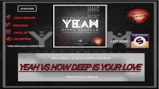 Steve Angello vs Calvin Harris - Yeah vs How Deep Is Your Love (Steve Angello Mashup)