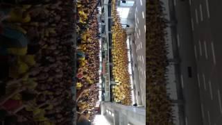 Congresso de jovens Abreu  2017  EBJ .