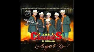 Los Canarios de Michoacan - Provocame