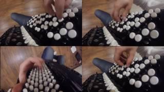 Avicii - Wake me up (accordion cover)