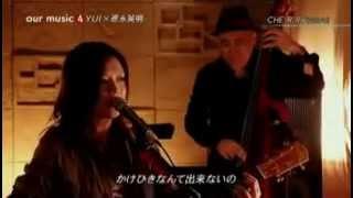 Hideaki Tokunaga and YUI   CHERRY Live