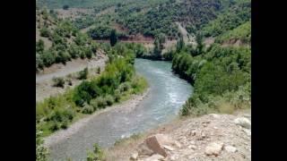 Töre Anadolu - Dert bir yanda
