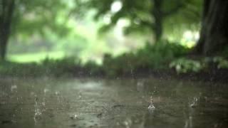 Kišna Pesma