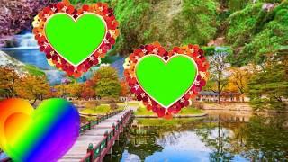 Wedding Green screen effects video background 2019 Teelsingh