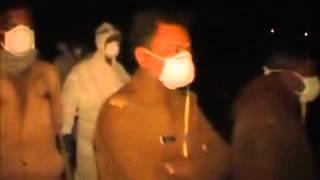 UP government sounds Bird Flu alert