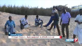 Forest dept releases baby turtles to sea at Kanyakumari | News7 Tamil