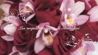 las orquídeas rojas de Shanghai booktrailer