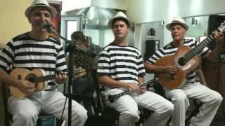 Parabéns em Samba   Grupo ChororoSambo