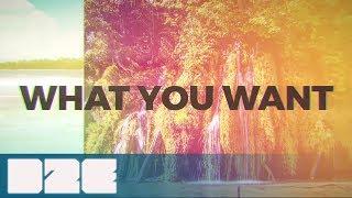 Tim Gartz & Cammora feat. Nicole Gartz - What You Want (Official Lyric Video)