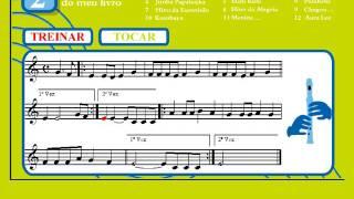 3 - Alecrim | Treinar | Vamos Tocar... Flauta de Bisel