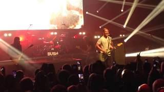 "Bush ""Swallowed"" Live"