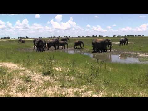5* 2 Chobe National Park