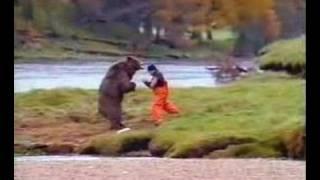 Bear Vs. Human