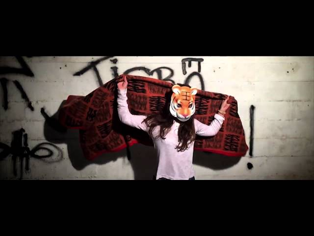 Video oficial de la canción Falta de actitud de tigra