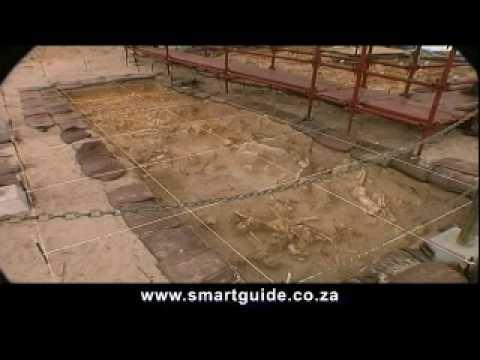 West Coast Fossil Park – Langebaan, South Africa