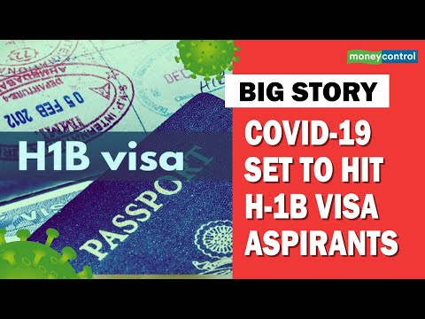 Donald Trump, H-1B visa, Travel visa, Orthocoronavirinae