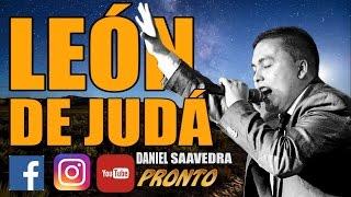 promo | León de judá | Daniel saavedra