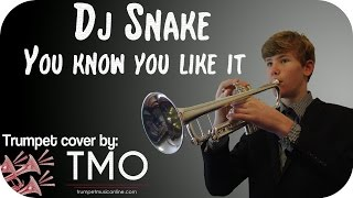 Dj Snake - You know you like it (AlunaGeore) (TMO Cover)