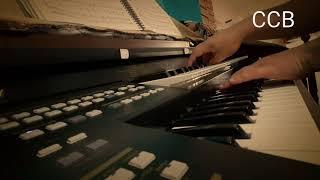 CCB Hino 154 - Terá que renascer Hinário 5 - Órgão Tokai YX 400 Organist