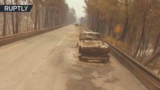 Aftermath of deadly forest fires in Portugal (DRONE FOOTAGE)