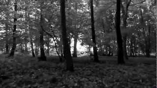 Massive Attack- Teardrop Unofficial Music Video
