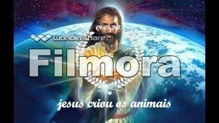 deus criou os animais