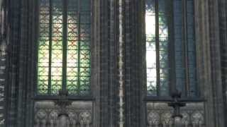 Cologne Cathedral With Bells Ringing