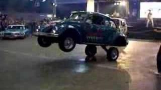 Crazy Lowrider Beetle