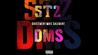 STZ - Doucement Mais Salement (Audio)