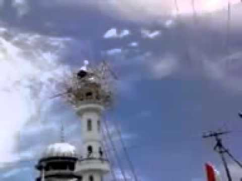 Allahs help miracle in Nepal Mosque.flv