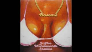 J-Live ft. Wordsworth & Soulive - Bosoms Remix (Acapella)